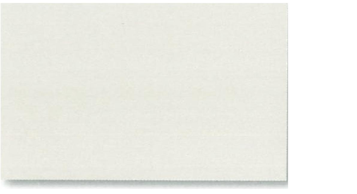 lichtgrau RAL 7035